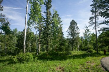 125 Forest Trail Edwards, CO - Image 14