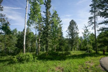 125 Forest Trail Edwards, CO 81632