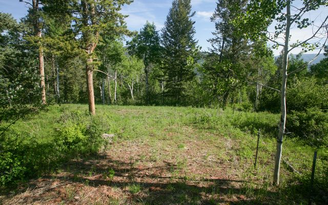 125 Forest Trail - photo 1