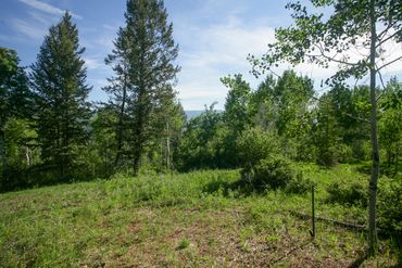 125 Forest Trail Edwards, CO - Image 3