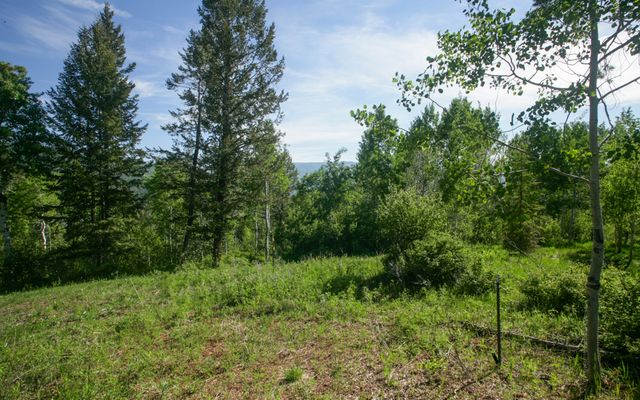 125 Forest Trail - photo 2