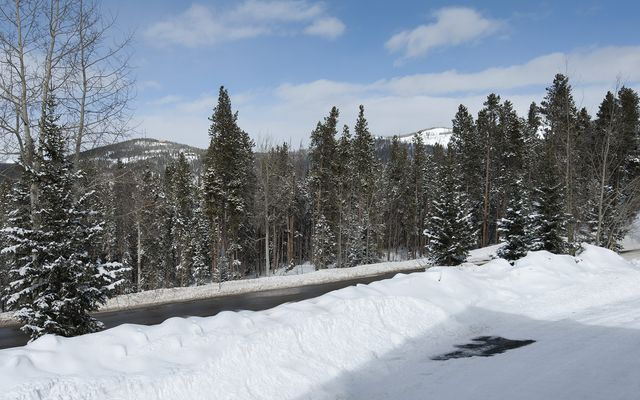 1682 Boreas Pass Road # A - photo 24