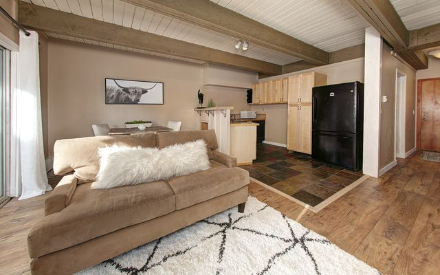Panorama Alpine Condo # 103 - photo 2