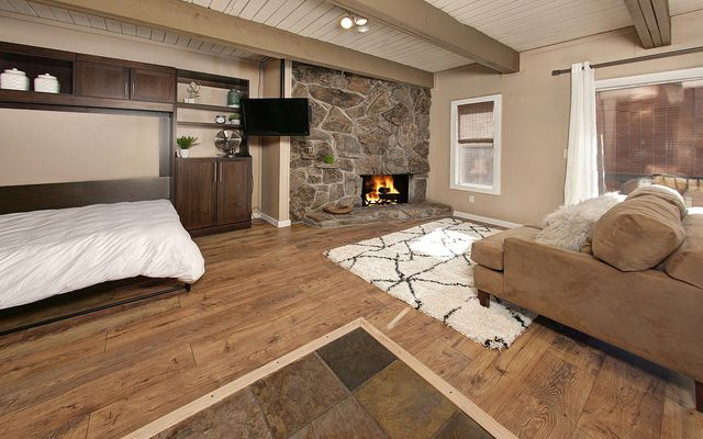 Panorama Alpine Condo # 103 - photo 3