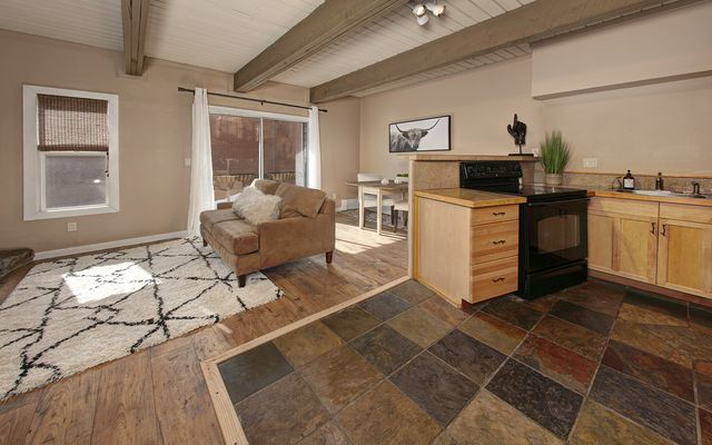 Panorama Alpine Condo # 103 - photo 6
