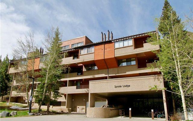 Spruce Lodge Condo # 398/498 - photo 20