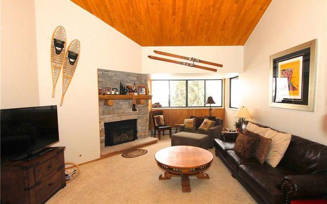 Spruce Lodge Condo # 398/498 - photo 4