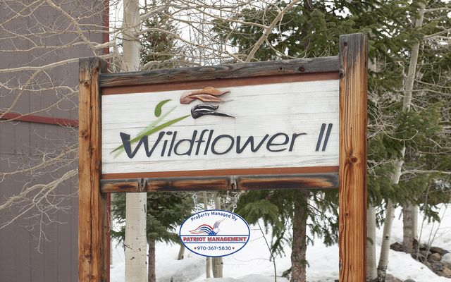 Wildflower Condo # b106 - photo 18