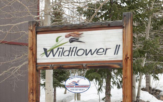 Wildflower Condo # b106 - photo 18