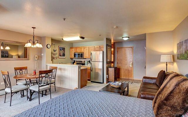 River Mountain Lodge Condo # 407 - photo 4