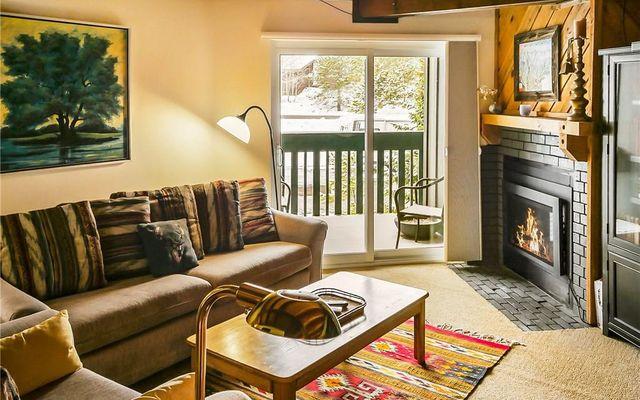 4400 Lodge Pole CIRCLE # 206 SILVERTHORNE, Colorado 80498