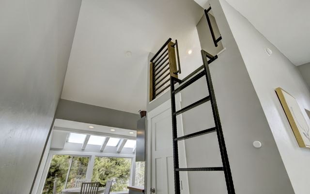 Pitkin Townhomes # c1 - photo 20