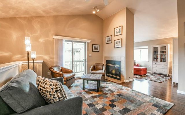 1515 Point DRIVE # 203 FRISCO, Colorado 80443
