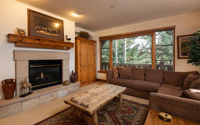 Pinecone Lodge # 201 - photo 1