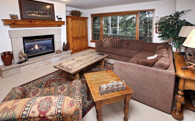 Pinecone Lodge # 201 - photo 3