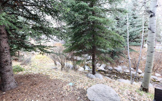 Spruce Tree Lodge # 203 - photo 10