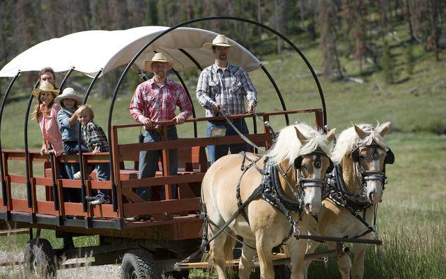300 Elk Circle Circle - photo 14