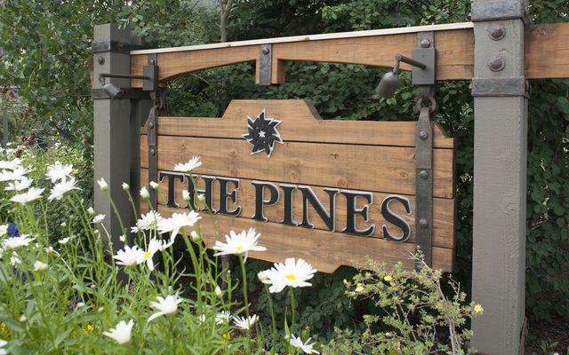 Pines At Keystone Condo # 2041 - photo 27