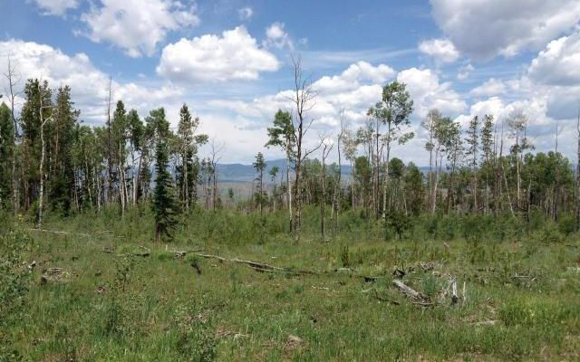 TBD County Road 373 PARSHALL, Colorado 80468