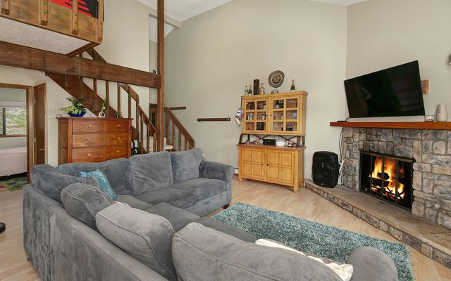 Buffalo Ridge Condo # E-201 - photo 2