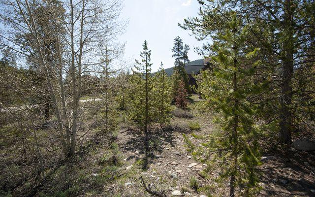 631 Elk Circle - photo 21