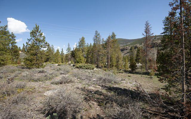 631 Elk Circle - photo 28