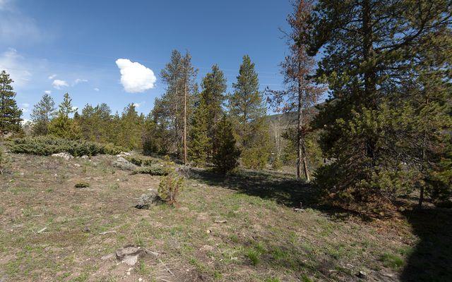 631 Elk Circle - photo 32