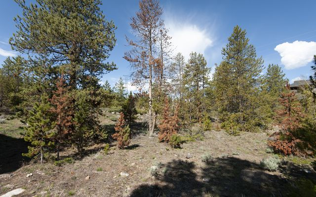 631 Elk Circle - photo 33