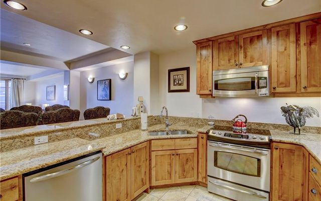1101 9000 Divide ROAD # 209 FRISCO, Colorado 80443
