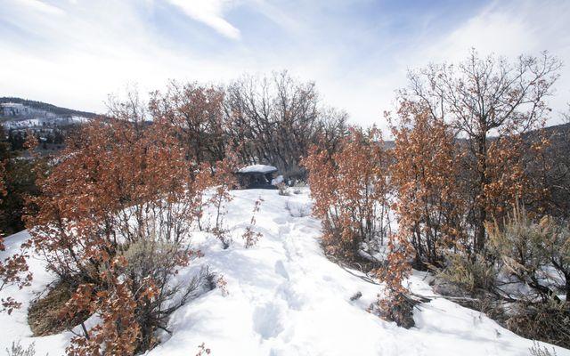 610 Red Tail Ridge - photo 5