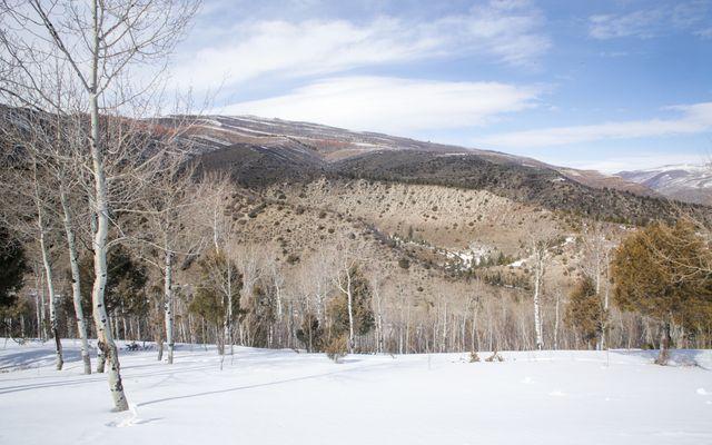 610 Red Tail Ridge - photo 7