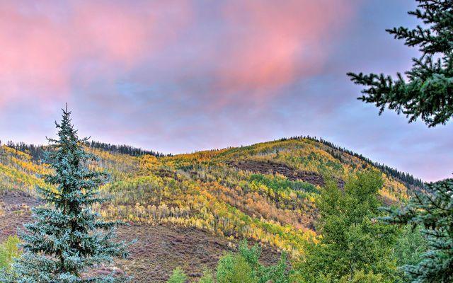 1768 Alpine Drive # 3 - photo 22