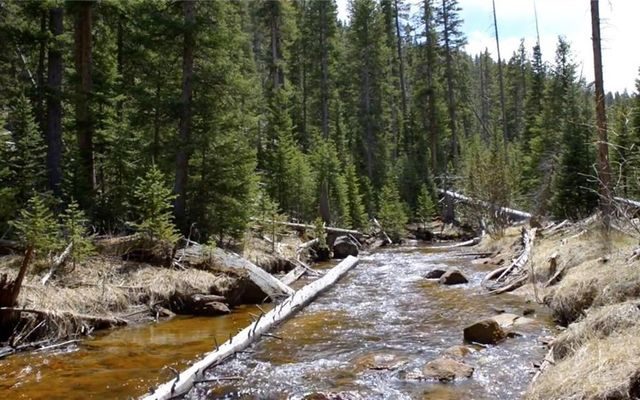 7824 Upper Bear Creek Road - photo 2