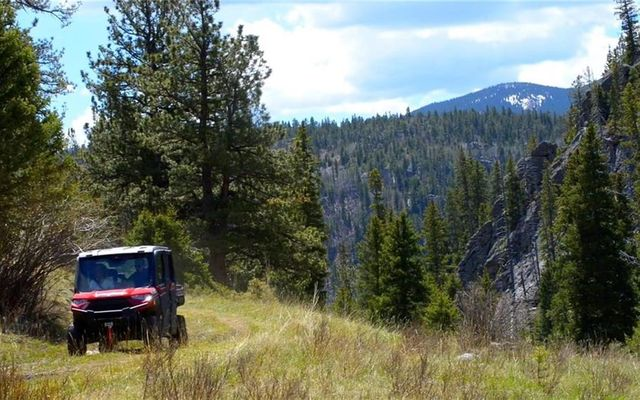 7824 Upper Bear Creek Road - photo 24