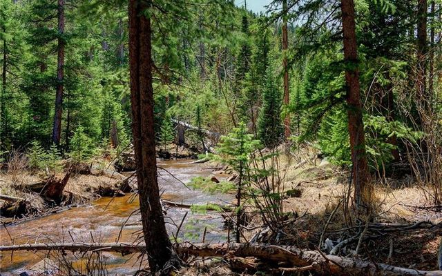 7824 Upper Bear Creek Road - photo 3