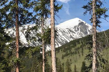 810 Whispering Pines CIRCLE BRECKENRIDGE, Colorado