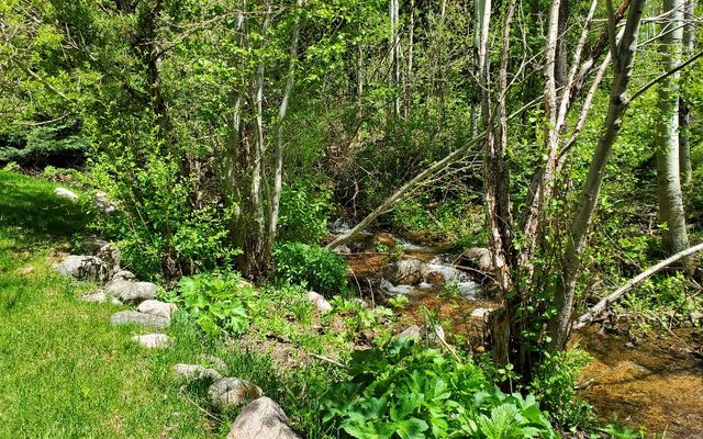 4250 Spruce Way - photo 8