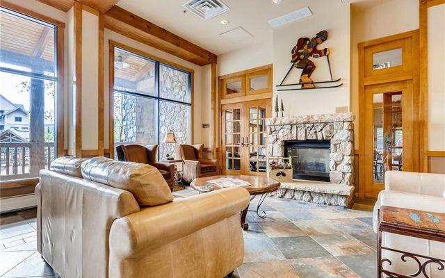 Buffalo Lodge And The Dakota Condos # 8383 - photo 17
