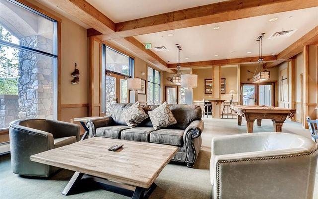 Buffalo Lodge And The Dakota Condos # 8383 - photo 21