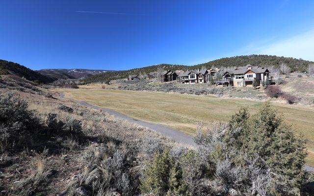 316 Abrams Creek Drive - photo 19