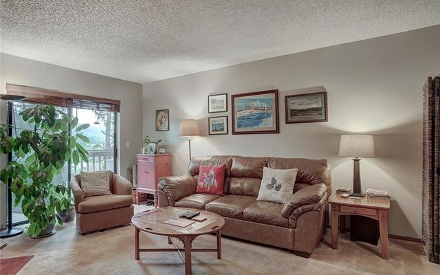 Meadow Creek Villa Condo # 208 - photo 2