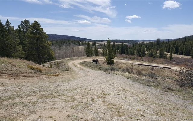 455 Mosquito Pass Road - photo 19