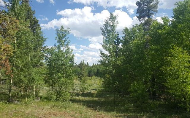 455 Mosquito Pass Road - photo 21