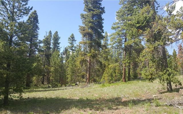 455 Mosquito Pass Road - photo 22