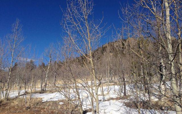 55 BEAR GULCH WAY JEFFERSON, Colorado 80456