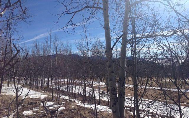 55 Bear Gulch Way - photo 2