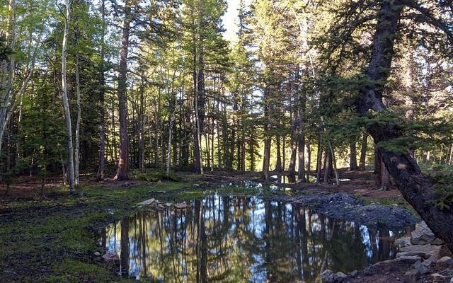 89 Sheep Creek Trail - photo 27