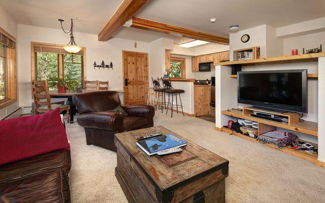 260 Ski Hill ROAD # B-6 BRECKENRIDGE, Colorado 80424