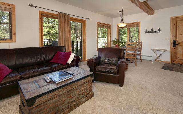 Twin Elk Lodge # B-6 - photo 1