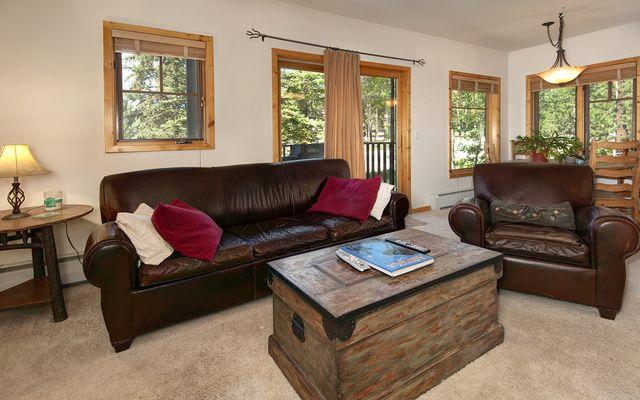 Twin Elk Lodge # B-6 - photo 3